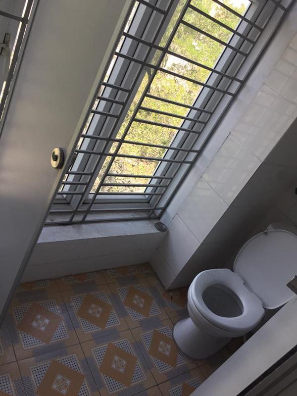 toilet-doc-2
